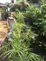 Taking care of the koi pond in Hawaii