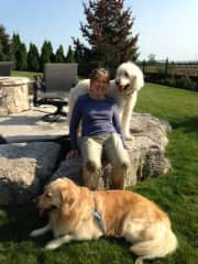 Taking a time out during a romp in the backyard with Angus and Murphy