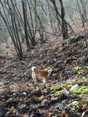 Nona on mountain path