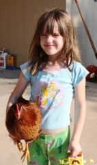 """Piper and """"Cutie"""" chicken"""