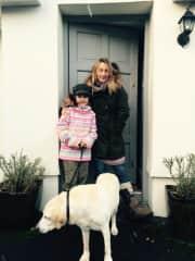 Dog walking in Ireland