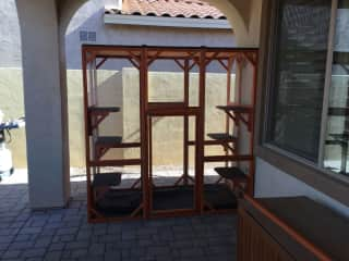 My outdoor cat enclosure which has since been expanded to include a Purrfect Fence for half of the backyard.