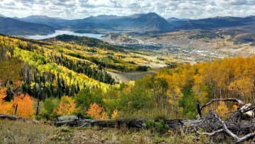 Vibrant leaves in Autumn, looking towards Lake Dillon