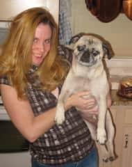 My Mom's Pug!