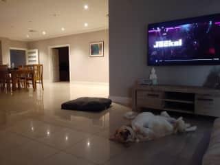 Enjoying Lola's company
