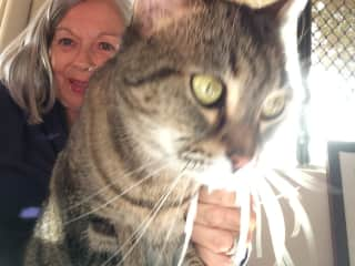 Lynette and Bubbles.....an adorable cat we look after often