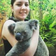 Kalika meeting with the koalas in Australia