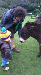Phil and Robin looking after a rescue donkey in 2016