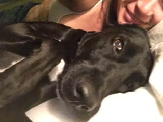 Me and my family dog, Sadie. We rescued her. She is a lab/ pointer mix.