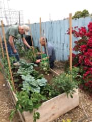 Carl giving gardening tips to a client.