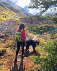 Hiking with Bowman in Alaska