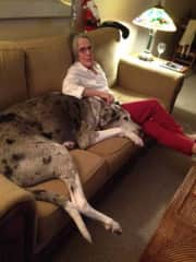 Gertrude the Great Dane and Margaret