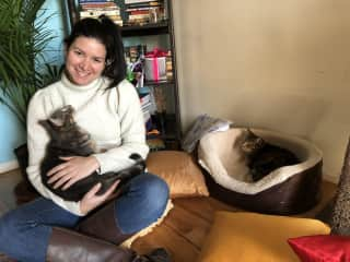 Me with David and Winston, my two favorite cats to cat sit!