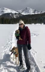 Snowshoeing with Izzy & Charlie in the San Juan Mountains