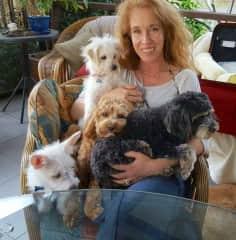 Wainoni and 'Home Pet Care'
