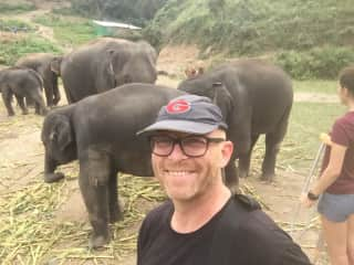In Chiang Mai I got to feed and swim with the elephants