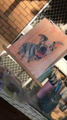 painting my dog!