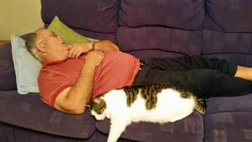 Pete and Ockie having a cat nap