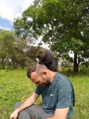 Blue Monkey grooming Kelly @ Kilimanjaro Animal C.R.E.W. Rescue