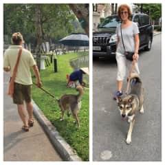 Walking in Hanoi