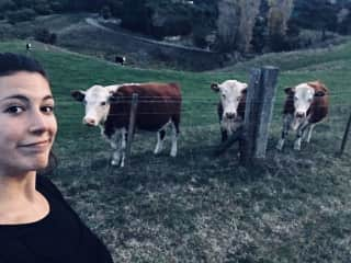 I've been a vegetarian for 8 years and gone vegan since I arrived to NZ!