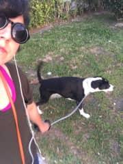 Lisann walking Chase