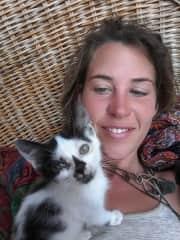 Sinai my foster kitty in Egypt