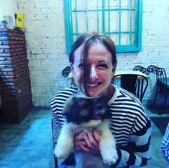 Stray puppy found home in Cambodia