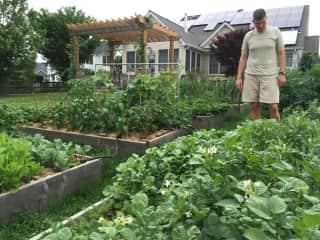 James in our vegetable garden