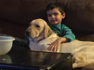 Thomas with our Yellow Lab - Rocky