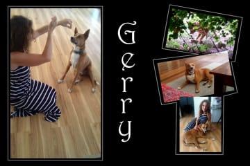 Gerry!  Likes to play with bricks - like a ball
