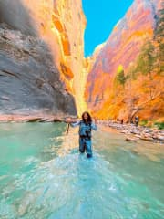 Hiking through the narrows in Zion National Park.