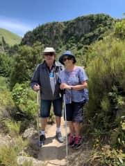 A recent walk in the South Island