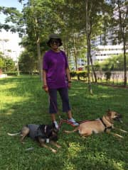 Me and my two girls Ebony and MD on a walk.