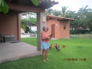 Debbie with Nuevo Vallarta chickens
