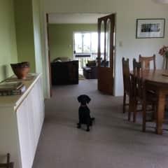 Ben in dinning room