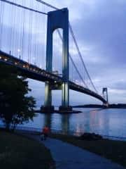 Around the corner The beautiful Verazzanno Bridge.