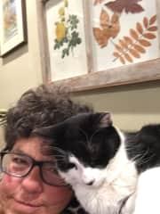 I like cats, too!