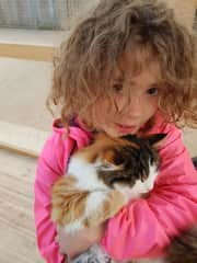 Bebba with a cat back home