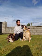 With Paddy and Finn in rural Ireland
