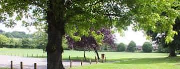 Buryfield Park in the village