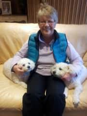 Patricia at a dog & cat sit.