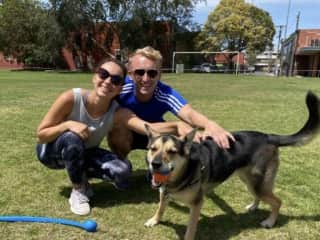 Ruby- our friend from Brunswick, Vic who loves to play fetch