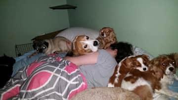 My favorite way to sleep!