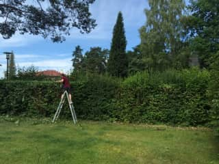 Willing to carry out the odd job in the garden