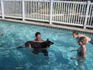Wayne teaching Odin where the steps to the pool are