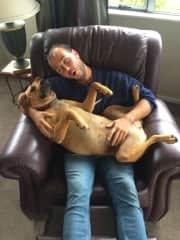 Zoe thinks she's a lap dog, but I don't mind.