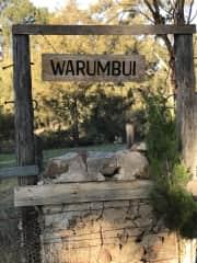 Welcome to Warumbui