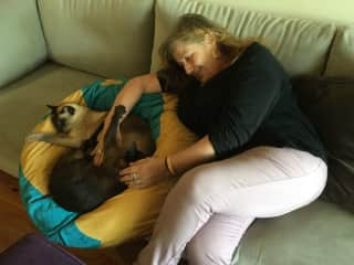 Me with Sissi and Milo, my  housitting in Melbourne27december2018/5 January 2019/
