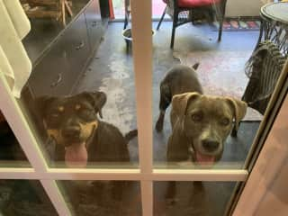 Can we come inside yet?